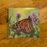 Monarch Butterfly on Aster Ceramic Drink Coaster II | Butterfly Coaster | Monarch Art