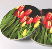 Tulips Photo Sandstone Car Coasters, Sold as a pair, Floral Art