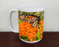 Monarch Butterfly on Milkweed Photo Coffee Mug