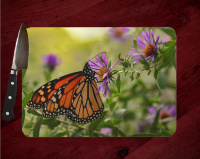 Monarch Butterfly Glass Cutting Board 8x11 and 12x15  | Monarch on Aster Art Counter Protector | Butterfly Home Decor