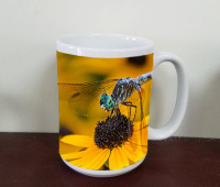 Dragonfly on Blackeyed Susan, Rudbeckia  Flower, Floral Fine Art Photo Mug by Koral Martin