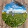 Spiderwort Wildflower Round Glass Cutting Board, Decorative Cheese Board, Counter Protector