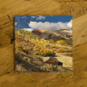 Colorado Old Cabin in the Fall Photo Ceramic Coaster