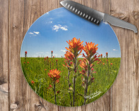 Indian Paintbrush Wildflower Round Glass Cutting Board, Decorative Cheese Board, Counter Protector (1)