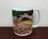 Deer at Black Water Falls Wildlife Coffee Mug