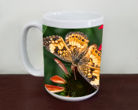 Butterfly on Coneflowers Photo Coffee Mug