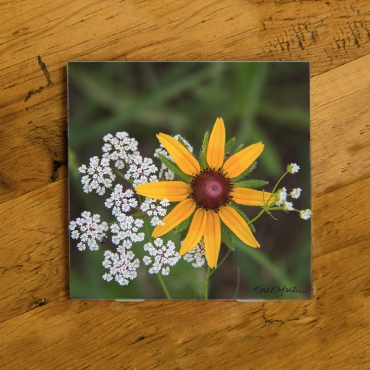 Black Eyed Susan Wildflower  Photo Ceramic Coaster