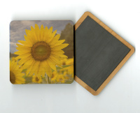 "Yellow Sunflower Field Photo 4""x4"" Wood  Coaster with Magnet on Back by Koral Martin"