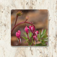 Bleeding Heart Floral Tumbled Stone Coaster | Drink Coaster | Absorbent Coaster | Trivet
