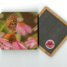 "Butterfly on a Coneflower Photo 4""x4"" Wood  Coaster with Magnet on Back"