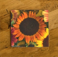 Fall Colored Sunflowers Ceramic Drink Coaster