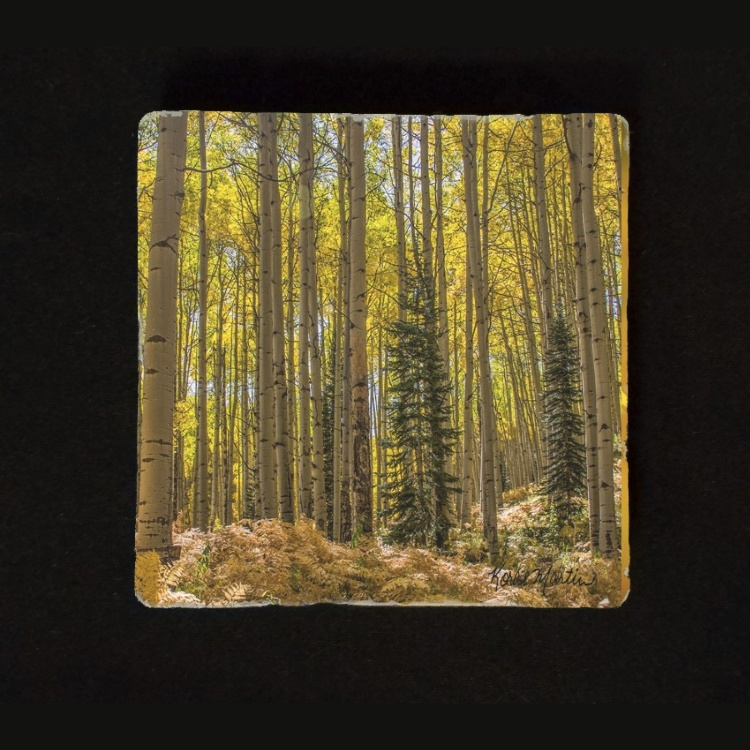 Fall Aspen and Fern  in Colorado Tumbled Stone Drink Coaster