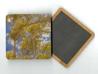 Aspen to the Sky 4x4 Wood Coaster with magnet