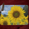 Yellow Sunflower Field Photo Tempered Glass Cutting Board 8x11 and 12x15