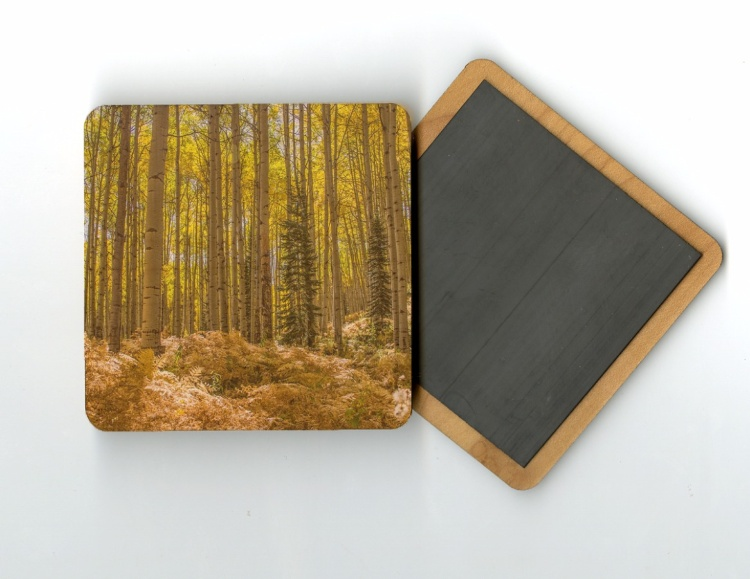 Aspen and Fern 4x4 Wood Coaster with magnet