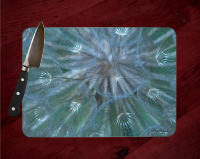 Goats Beard Seed Pod Photo Tempered Glass Cutting Board 8x11 and 12x15