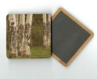 Aspen Tree Trunks 4x4 Wood Coaster with magnet