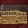 Colorado Golden Aspen before the Storm Glass Cutting Board 8x11 and 12x15 | Colorado Cutting Board | Colorado Art