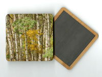 Aspen Grove II 4x4 Wood Coaster with magnet