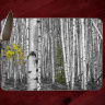 Colorado Aspen in Black and White with a touch of Color Glass Cutting Board 8x11 and 12x15