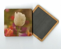 White Tulip 4x4 Wood Coaster with Magnet on Back