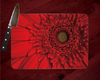 Red Gerbera Flower Fine Art Photo Tempered Glass Cutting Board 8x11 and 12x15