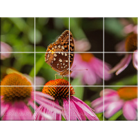 Butterfly on Coneflower Tile Mosaic