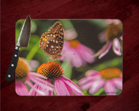 Butterfly on Pink Coneflower Glass Cutting Board 8x11 and 12x15  | Butterfly Art Counter Protector | Wildflowers