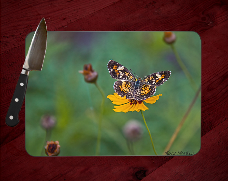 Butterfly on Coreopsis Glass Cutting Board 8x11 and 12x15 | Butterfly Art | Wildflowers | Counter Protector