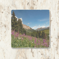 Colorado Mountain and Fireweed Tumbled Stone Coaster | Colorado Drink Coaster | Colorado Home Decore