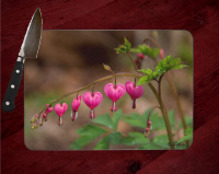 Bleeding Heart Glass Cutting Board 8x11 and 12x15