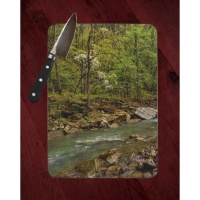 Devils Den Lee Creek Photo on Tempered Glass Cutting Board