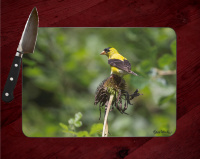 Gold Finch Photo on Tempered Glass Cutting Board 8x11 and 12x15