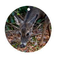 "Deer Grazing Ceramic Ornament With Photo by Koral Martin, 3"" Round"