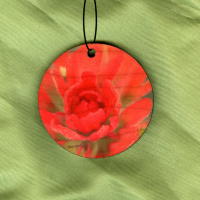 Indian Paintbrush Wildflower Wood Ornament With Photo by Koral Martin