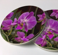Pink Orchid Sandstone Car Coasters, Sold as a pair
