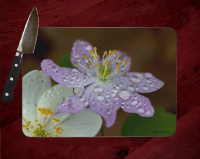 Rue Anemone Photo on Tempered Glass Cutting Board 8x11 and 12x15