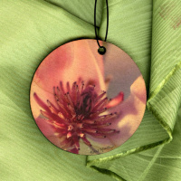 Saucer Magnolia Bloom Round Wood Ornament With Photo by Koral Martin