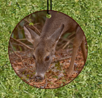 Deer Grazing Round  Wood Ornament With Photo by Koral Martin,