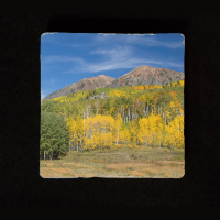 "Aspen Mountain 6""  Tumbled Stone Trivet"