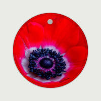 Red Anemone Photo Ceramic Ornament