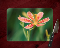 Blackberry Lily Floral Glass Cutting Board 8x11 and 12x15 | Nature Photo Chopping Board | Floral Counter Protector