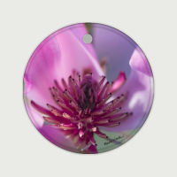 Saucer Magnolia Blossom Photo Round Ceramic Ornament