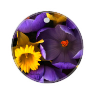 Crocus & Daffodile Photo Round Ceramic Ornament