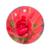 Indian Paintbrush Round Ceramic Ornament With Photo