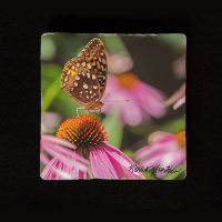 "Butterfly on Coneflower 6""  Tumbled Stone Trivet"