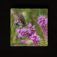 "Butterfly on Liatris 6""  Tumbled Stone Trivet"