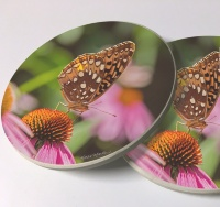 Butterfly and Coneflower Photo Sandstone Car Coasters, Sold as a pair, Floral Art