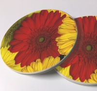 Gerbera Daisies Photo Sandstone Car Coasters, Sold as a pair, Floral Art